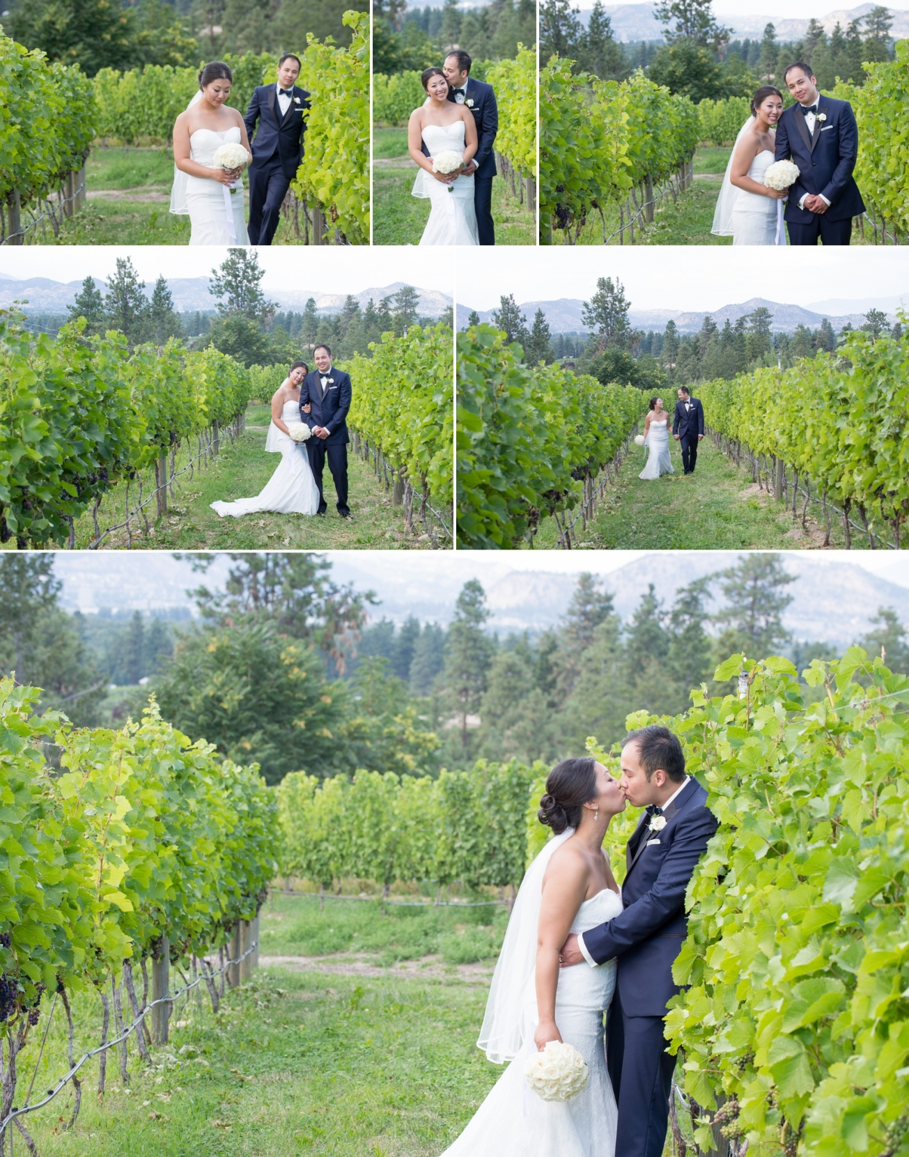Tantalus Winery Wedding - Kelowna Okanagan - Suzanne le Stage 15