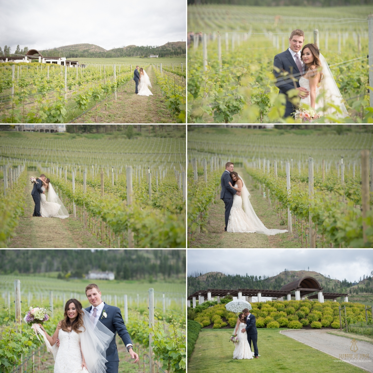 Cedar Creek Winery Wedding - Kelowna Okanagan Photography - Suzanne Le Stage 12